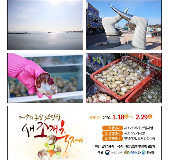홍성 남당항 새조개 축제