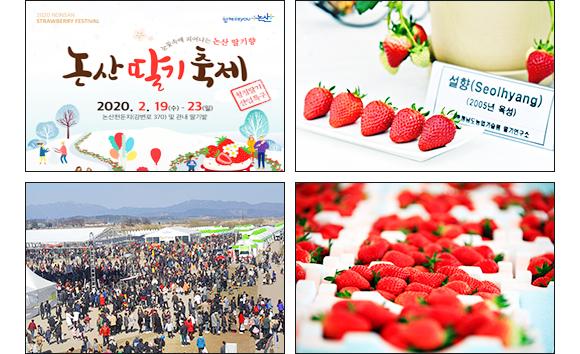 논산딸기축제