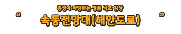 홍성이 자랑하는 명품 낙조 감상 속동전망대(해안도로)