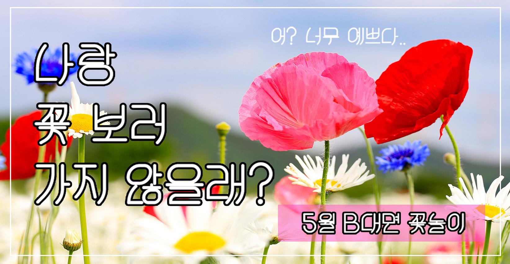 나랑 꽃 보러 가지 않을래? 5월 B대면 꽃놀이